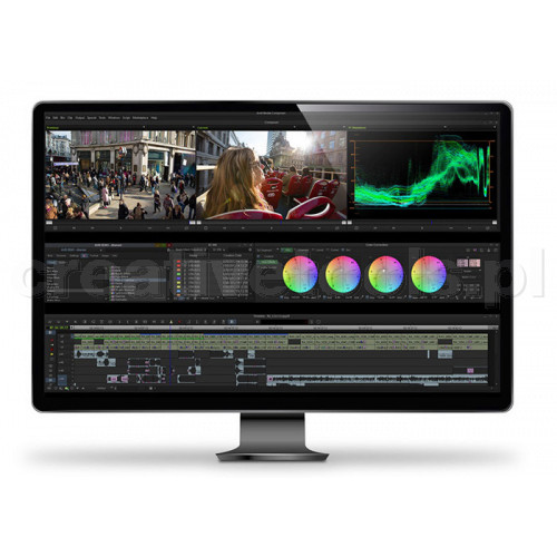 Avid Media Composer Perpetual License EDU (ESD)