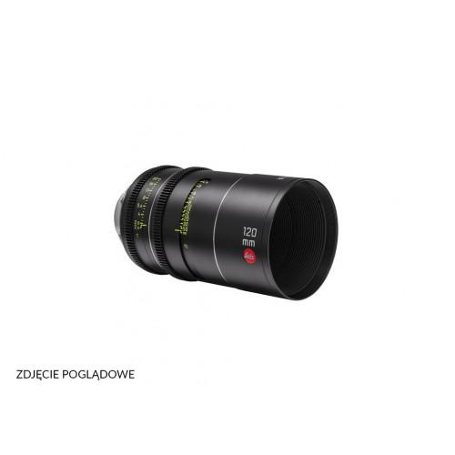 Leitz Thalia T2.6 120mm LPL
